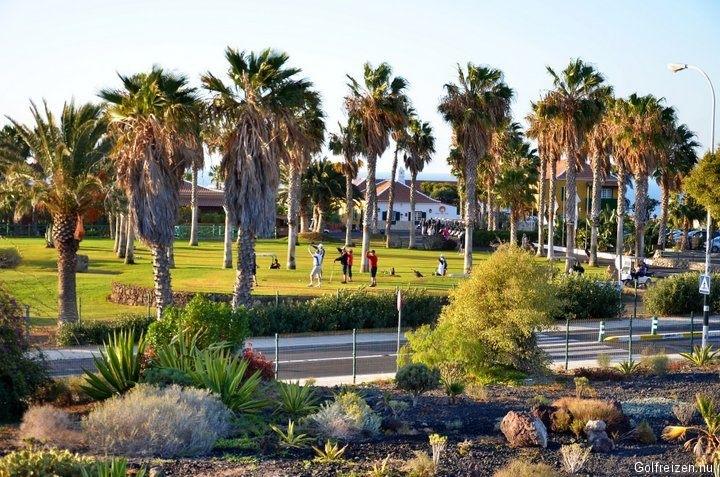 Jardin tropical hotel canarische eilanden tenerife for Hotel jardin tropical tenerife sur