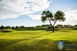 Club de Golf Terramar Golfbaan