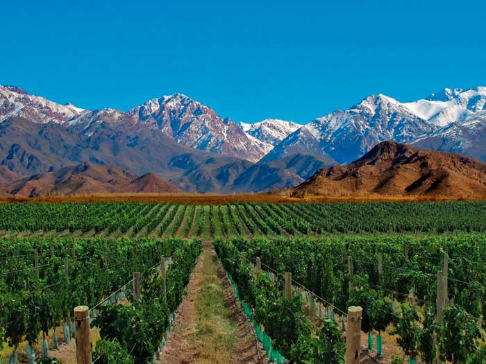 Tours From Buenos Aires To Mendoza