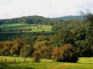 Golfreizen Ardennen