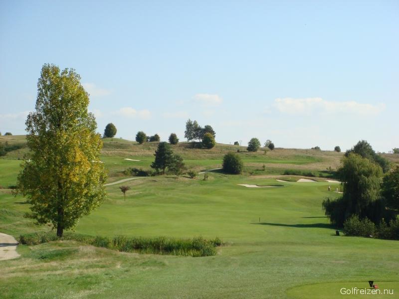 Kikuoka Golf