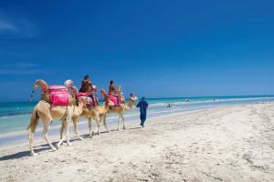 Golfreizen Djerba Midoun