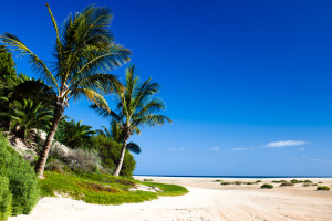 Golfreizen Fuerteventura