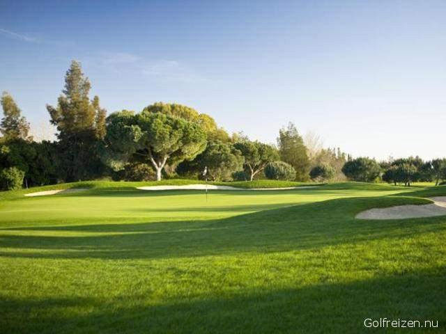 Oceanico Millenium Golf