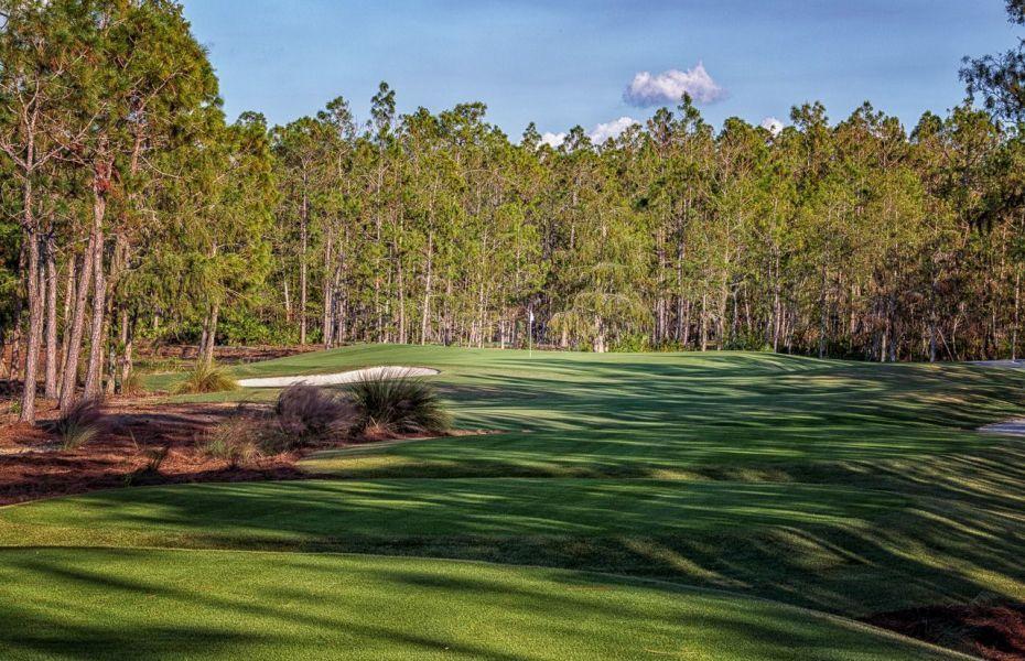 Tiburón Golf Club - Black Course