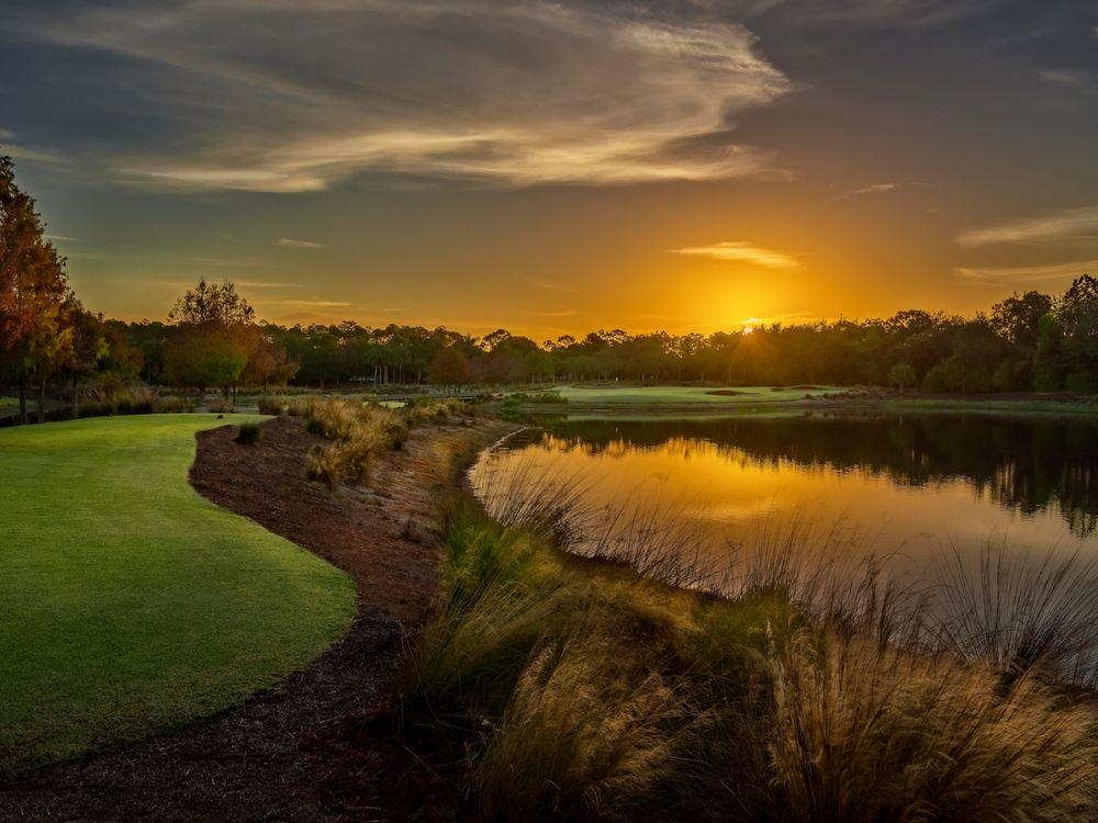 Tiburón Golf Club - Golden Course